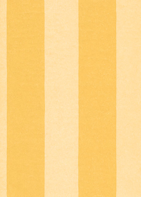 Regency Stripe Feature Wallpaper